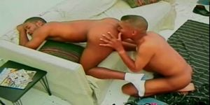Gay Black Huge Cock Fucking