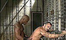 Master Avery Chains Ethan To A Cage2