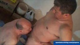 Horny Daddies Serviced
