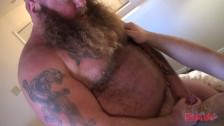 Younger Bear Fucks Daddy Bear