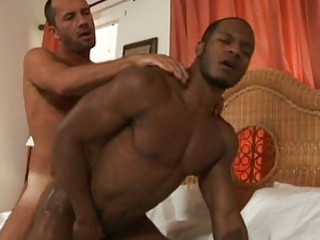 Papi Gay Smooth Big Ass Bareback