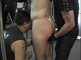 Studs In Bd Fondle Cocks