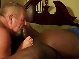 Daddy Suck Black Cock