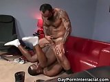 Tattooed Hairy Gay Butt Fucks His Man And Jizzes On Him