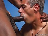 Young Black Stud Banging A Mature Man